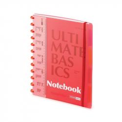 Блокнот Альт Ultimate Basics Project book А4 80 листов в ассортименте в клетку с  линейкой 4 разделителя на кольцах(235х300) мм)