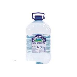 Вода питьевая Шишкин Лес (5л, 2 шт/уп)